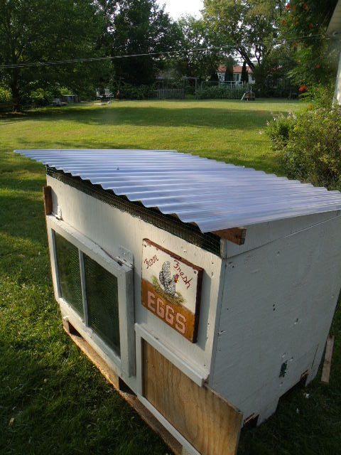 Hen house from a shipping crate